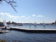 Sail boats on Charles River